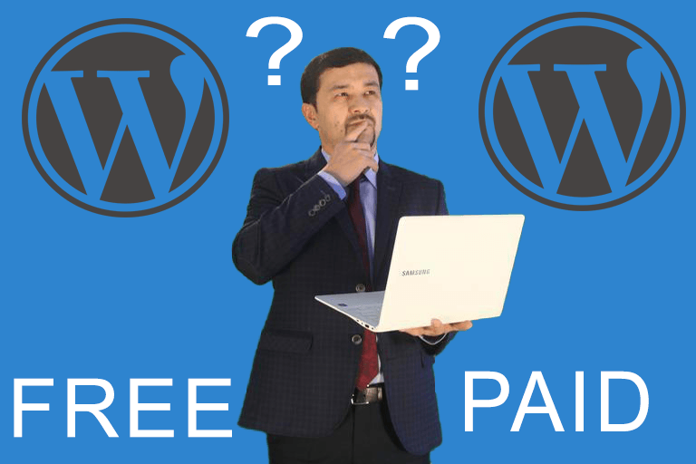 wordpress free theme versus paid theme
